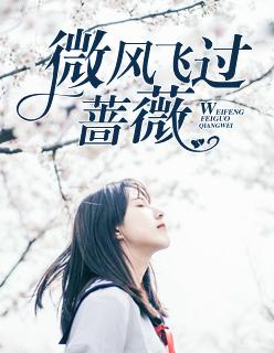 完整版《微风飞过蔷薇》小说全文最新章节