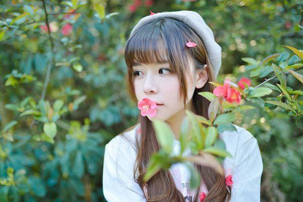 微风飞过蔷薇小说《微风飞过蔷薇》全文免费阅读完整版