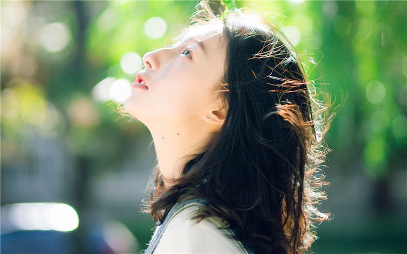 微风飞过蔷薇小说全文免费阅读 微风飞过蔷薇免费阅读小说